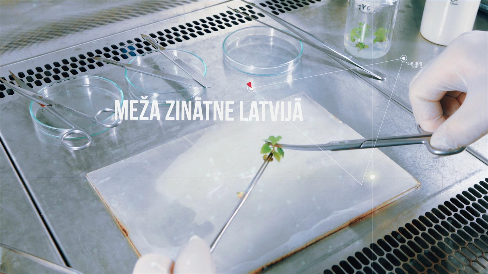 Meža zinātne Latvijā